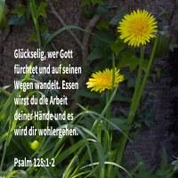 Glückselig ein jeder, der Jehova fürchtet, der da wandelt in seinen Wegen! Denn essen wirst du die Arbeit deiner Hände; glückselig wirst du sein, und es wird dir wohlgehen ( Psalm 128:1-2 )