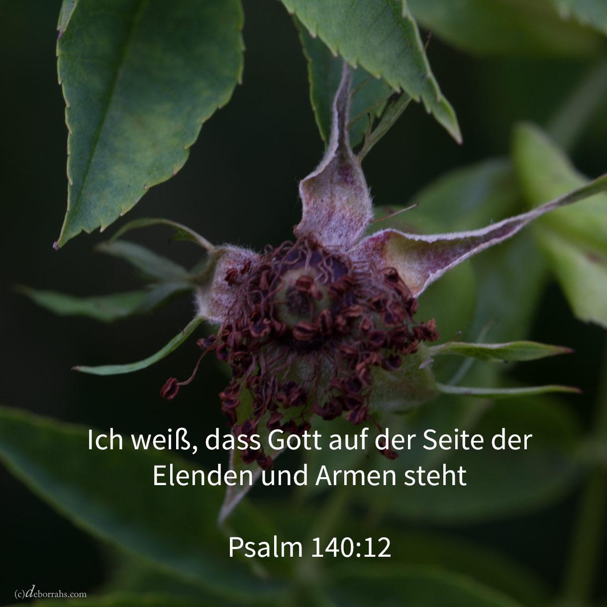 Ich weiß, dass Jehova ausführen wird die Rechtssache des Elenden, das Recht der Armen ( Psalm 140,12 )