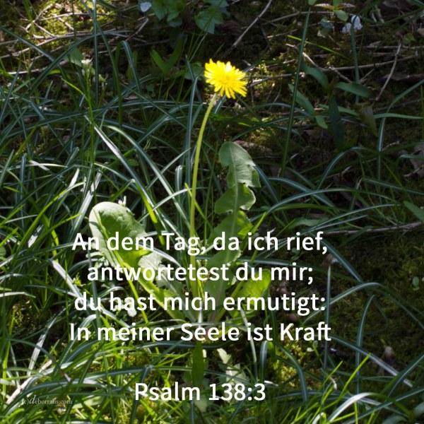 An dem Tag, da ich rief, antwortetest du mir; du hast mich ermutigt: In meiner Seele ist Kraft ( Psalm 138,3 )