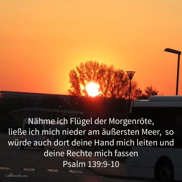 Nähme ich Flügel der Morgenröte, ließe ich mich nieder am äußersten Ende des Meeres, auch daselbst würde deine Hand mich leiten, und deine Rechte mich fassen ( Psalm 139,9-10 )