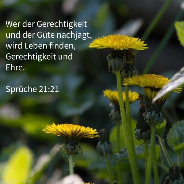 Wer der Gerechtigkeit und der Güte nachjagt, wird Leben finden, Gerechtigkeit und Ehre ( Sprüche 21,21 )