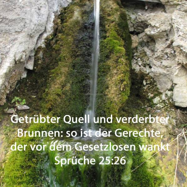 Getrübter Quell und verderbter Brunnen: so ist der Gerechte, der vor dem Gesetzlosen wankt ( Sprüche 25,26 )