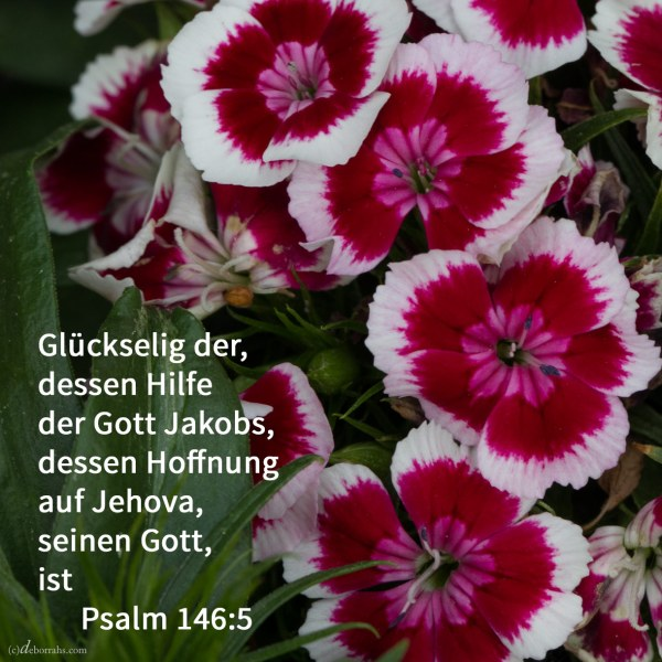Glückselig der, dessen Hilfe der Gott Jakobs, dessen Hoffnung auf Jehova, seinen Gott, ist ( Psalm 146,5 )