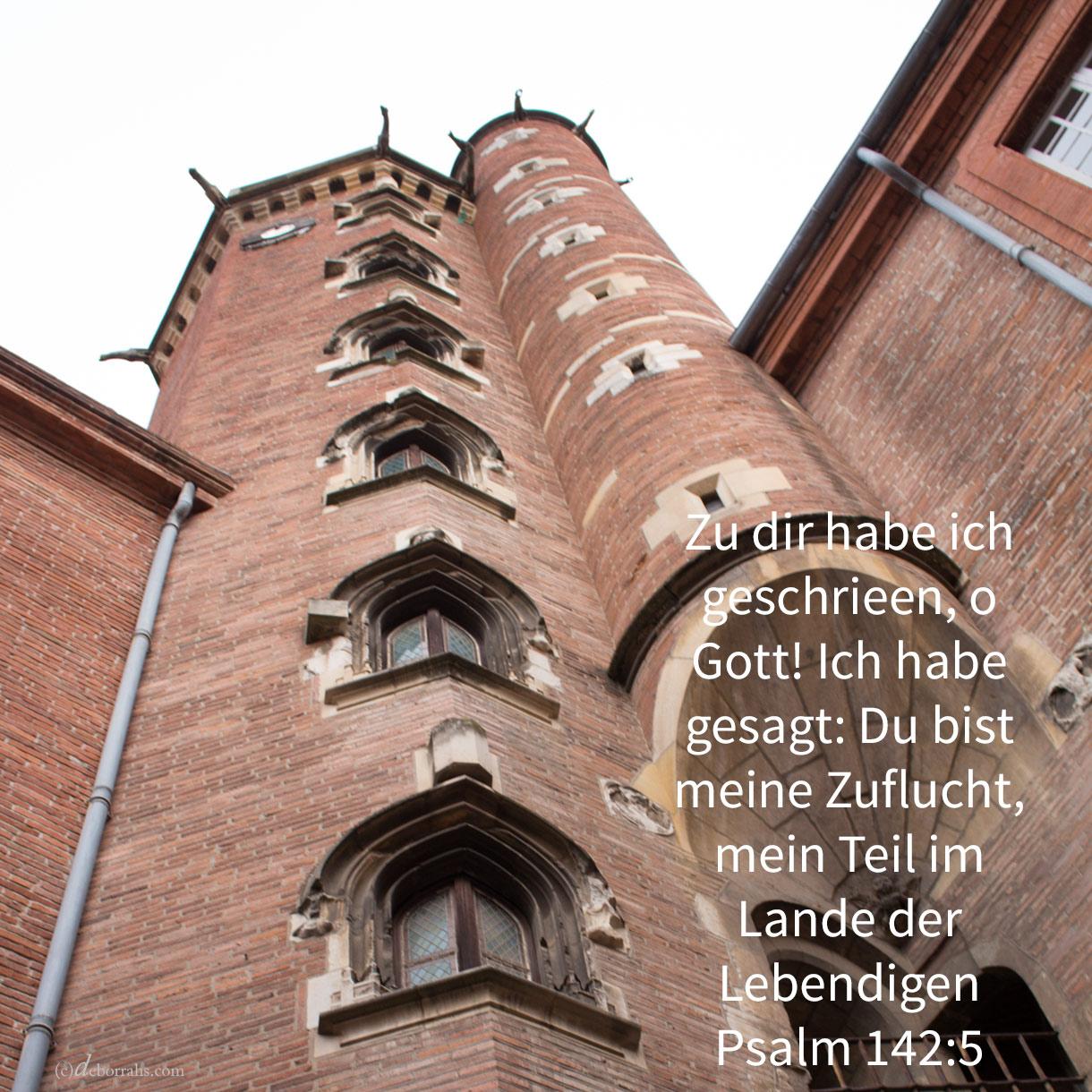 Zu dir habe ich geschrien, Jehova! Ich habe gesagt: du bist meine Zuflucht, mein Teil im Lande der Lebendigen ( Psalm 142,5 )