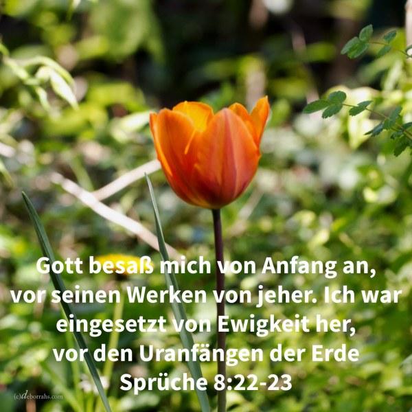 Jehova besaß mich im Anfang seines Weges, vor seinen Werken von jeher. Ich war eingsetzt von Ewigkeit her, von Anbeginn, vor den Uranfängen der Erde ( Sprüche 8,22-23 )