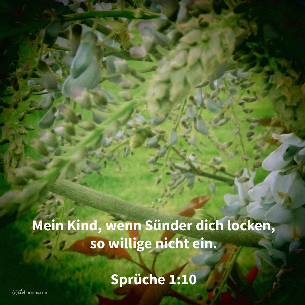 Mein Kind, wenn Sünder dich locken, so willige nicht ein (Sprüche 1,10 )