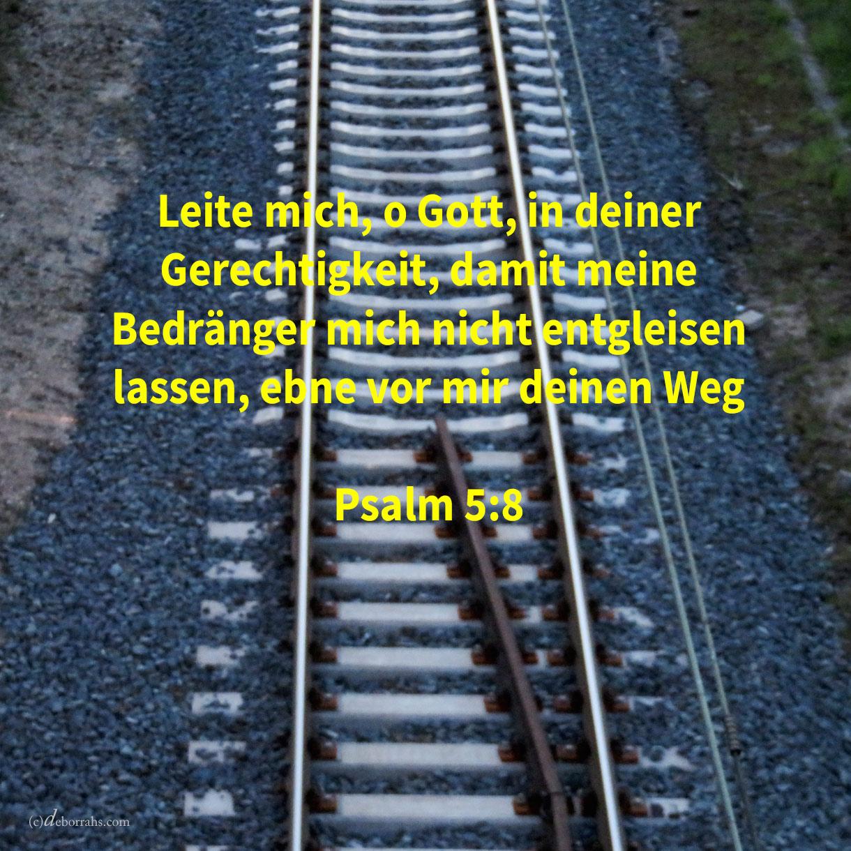 Leite mich, Jehova, in deiner Gerechtigkeit um meiner Feinde willen; ebne vor mir deinen Weg ( Psalm 5,8 )