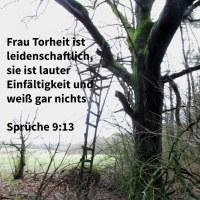 Frau Torheit ist leidenschaftlich; sie ist lauter Einfältigkeit und weiß gar nichts ( Sprüche 9,13 )