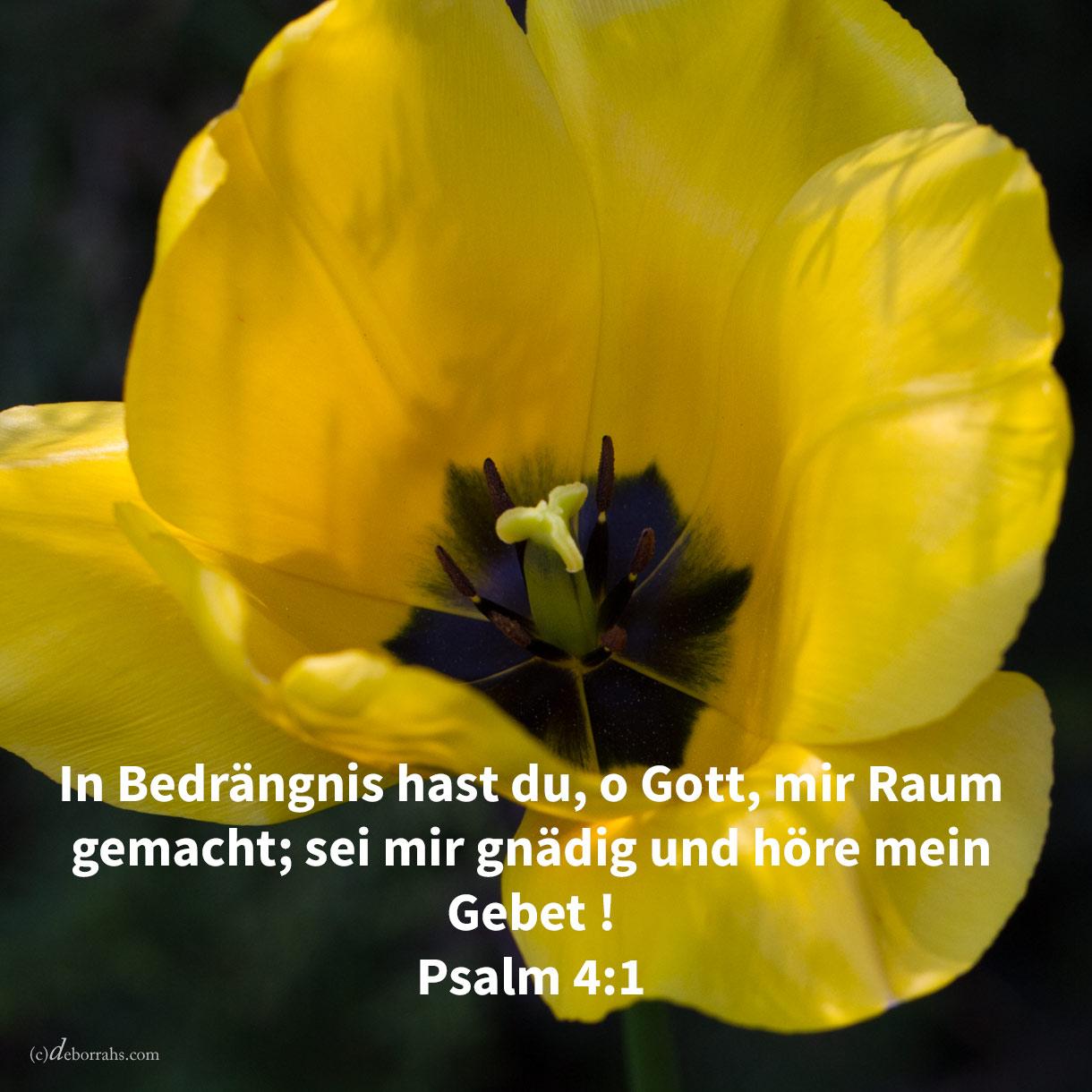 In Bedrängnis hast du, o Gott, mir Raum gemacht; sei mir gnädig und höre mein Gebet ! ( Psalm 4,1 )