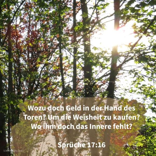 Wozu doch Geld in der Hand eines Toren, um Weisheit zu kaufen, da ihm doch der Verstand fehlt? ( Sprüche 17,16 )