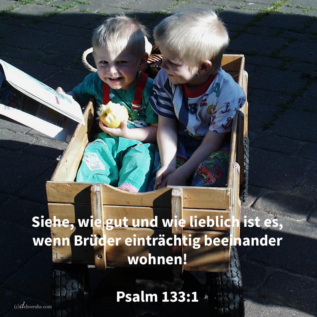 Siehe, wie gut und wie lieblich ist es, wenn Brüder einträchtig beeinander wohnen! ( Psalm 133,1 )