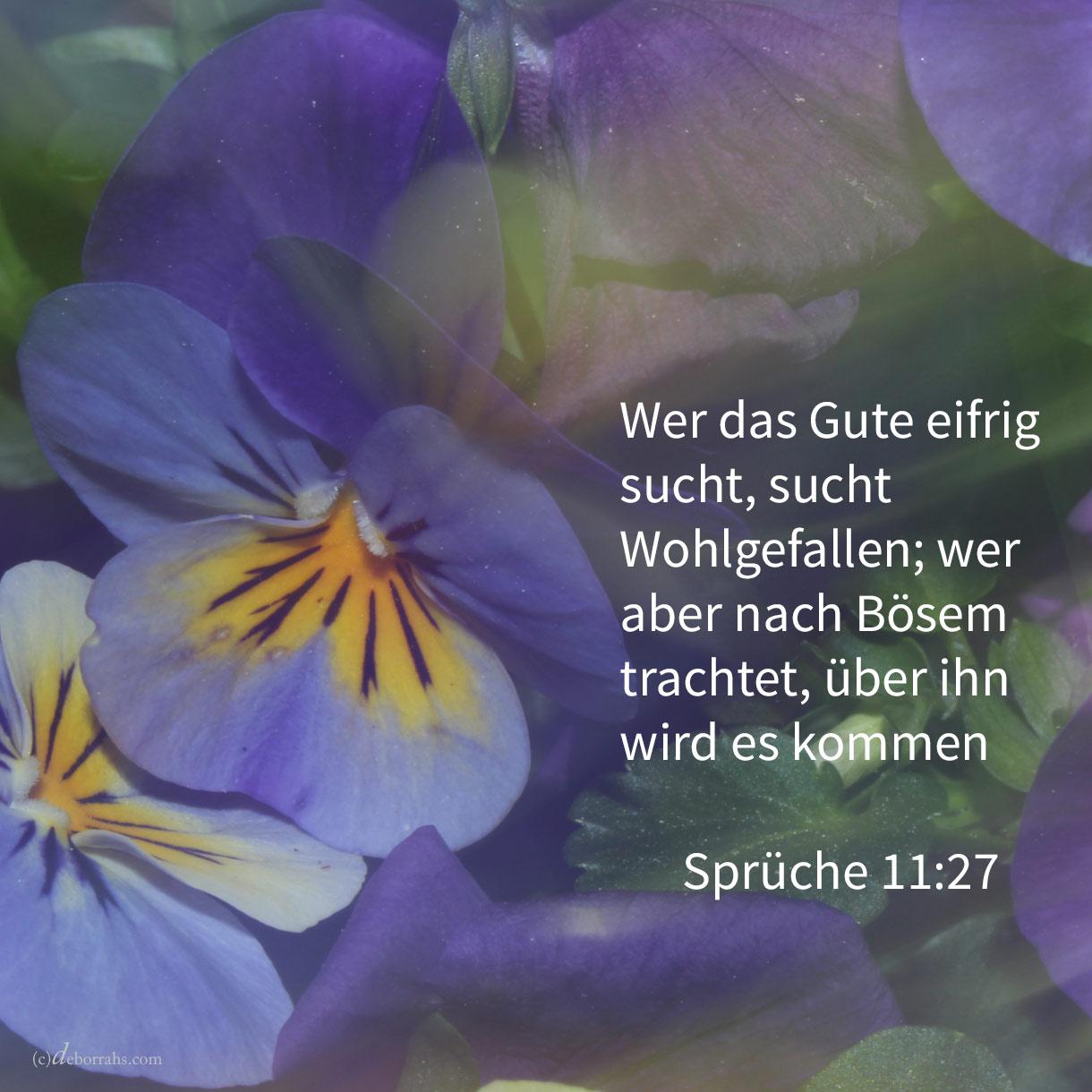 Wer das Gute eifrig sucht, sucht Wohlgefallen; wer aber nach Bösem trachtet, über ihn wird es kommen ( Spr 11:27 )