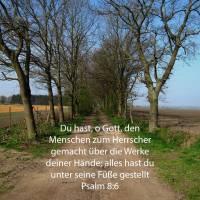 Du hast, o Gott, den Menschen zum Herrscher gemacht über die Werke deiner Hände; alles hast du unter seine Füße gestellt ( Psalm 8,6)