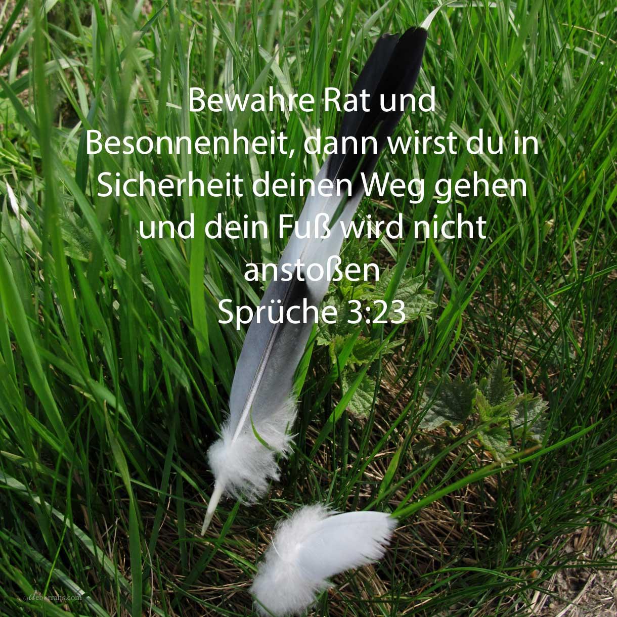 Bewahre klugen Rat und Besonnenheit, dann wirst du in Sicherheit deinen Weg gehen, und dein Fuß wird nicht anstoßen ( Sprüche 3,23 )