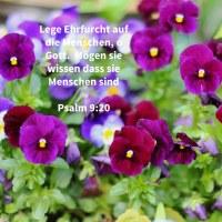 Lege Furcht auf die Menschen, Jehova; mögen die Nationen wissen, dass sie Menschen sind ( Ps 9,20 )