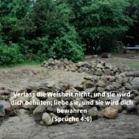 Verlass die Weisheit nicht, und sie wird dich behüten; liebe sie, und sie wird dich bewahren ( Sprüche 4,6 )