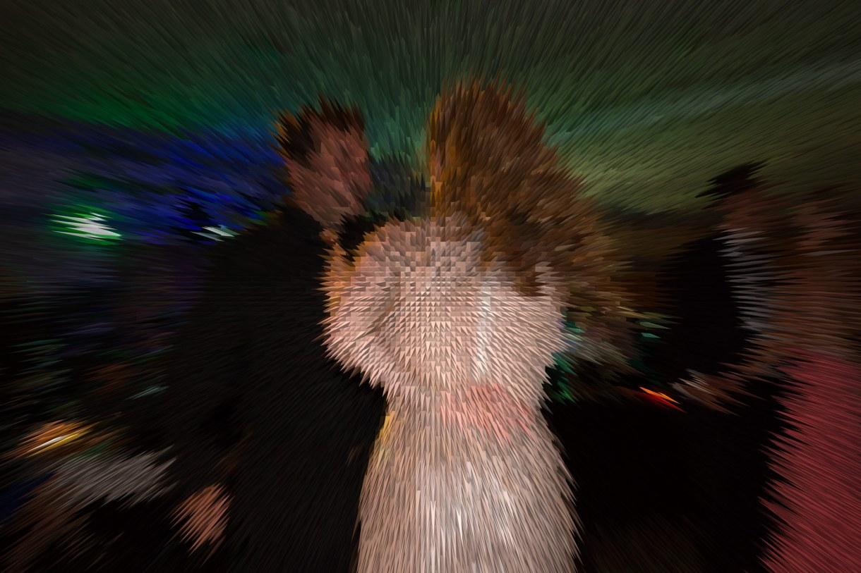Party – Let's dance