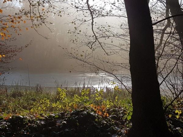 Nebel - Herbststimmung am See